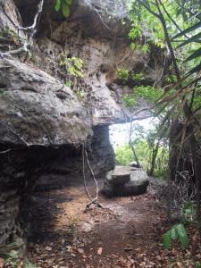 trilha acesso Pedra do Pilão2
